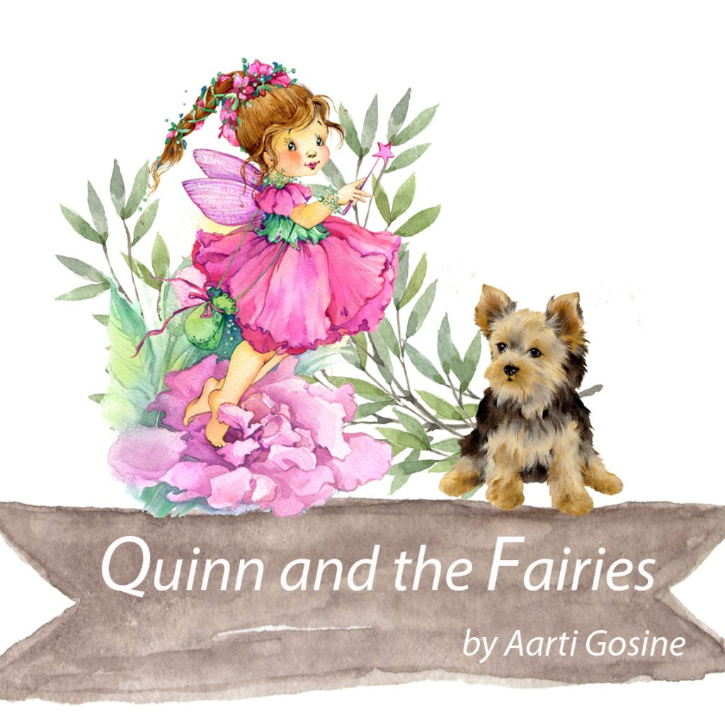 Quinn and the Fairies